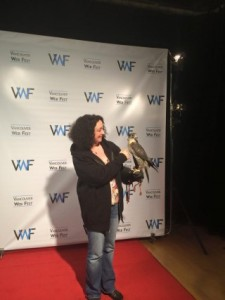 Author Kerry Gillard with Sabre the gyrfalcon